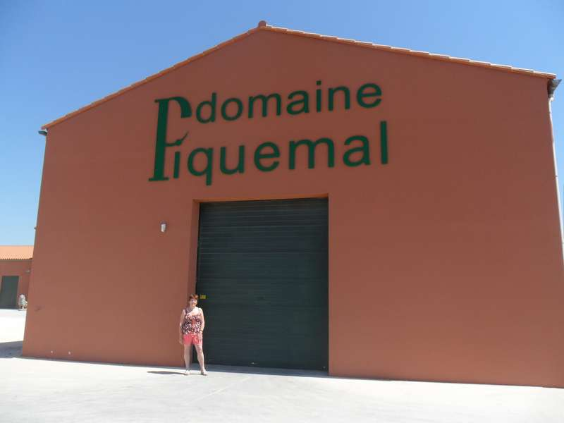 visite au domaine Piquemal